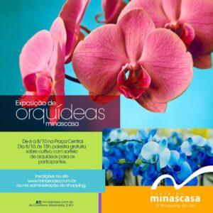 orquideas-2